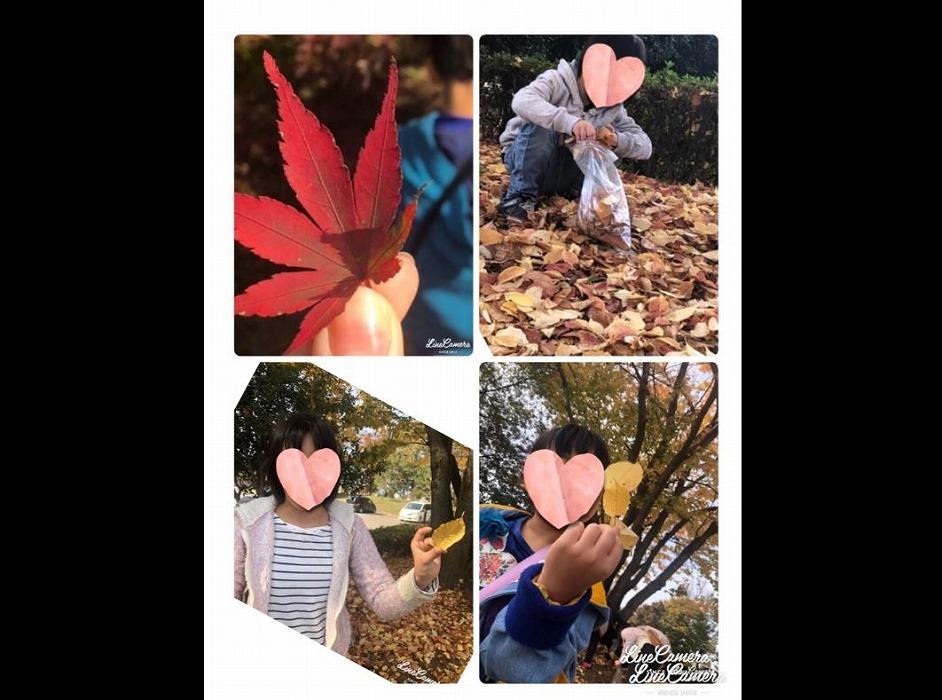 若松原店の活動「紅葉を探しに行こう」・画像